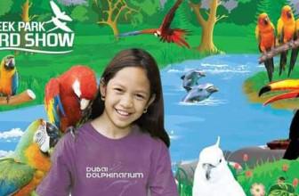 Creek Park Exotic Bird Show – Place to visit in Dubai, UAE