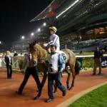 Meydan Race Nights 2014