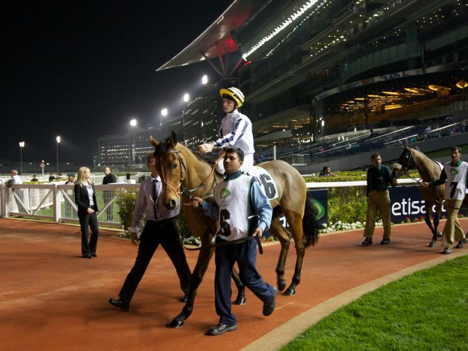 Meydan Race Nights 2014 – Dubai