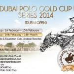 Dubai Polo Gold Cup Series 2014, Silver Cup, Dubai Polo and Equestrian Club, Arabian Ranches, international polo tournament