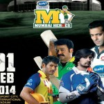 Celebrity Cricket League 2014 Season 4, A T20 match, Celebrity, February 2014, Dubai International Cricket Stadium