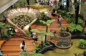 Dubai-Butterfly-Garden2