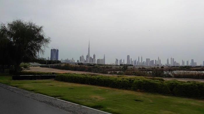 Dubai WildLife Sanctuary