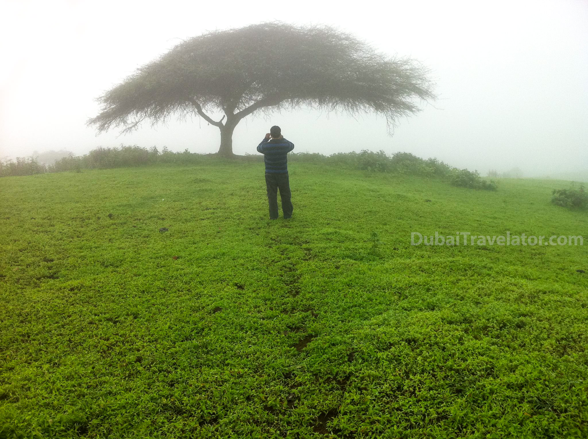 How to go to Salalah from Dubai?