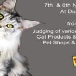 The-10th-international-cat-show-dubai-2014