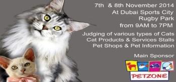 The 10th International Cat show in Dubai 2014