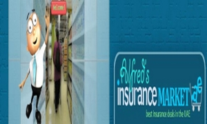 Car insurance companies in Dubai | Alfred insurance market Dubai, UAE