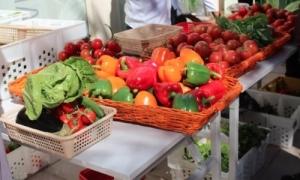 Blue Planet Green People Organic Food Stores in Dubai, UAE
