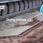 Carpet Pro Wash - Professional Carpet Cleaning in UAE