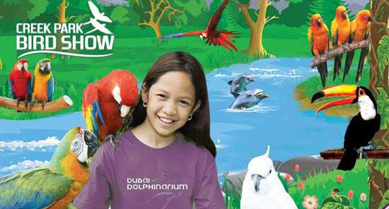 Creek Park Exotic Bird Show – Place to visit in Dubai, UAE
