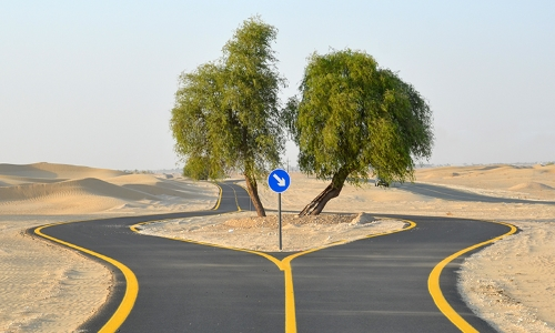Cycle Track in Dubai - Al Qudra Road Cycle Path in Dubai, UAE
