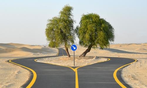 Cycle Track in Dubai - Al Qudra Road Cycle Path in Dubai, UAE