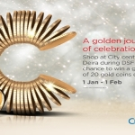 DSF 2015 promotion at Mirdif city centre