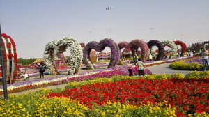 Dubai Miracle Garden - Places to Visit in Dubai