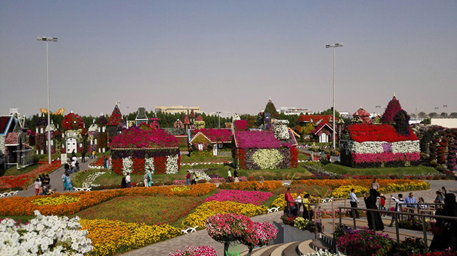 Dubai Miracle Garden – Places to Visit in Dubai