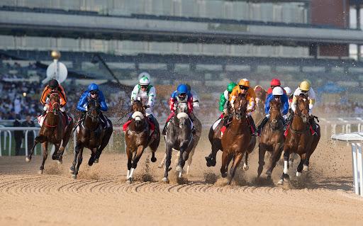Dubai World Cup Carnival on Mar 7th at Meydan Racecourse
