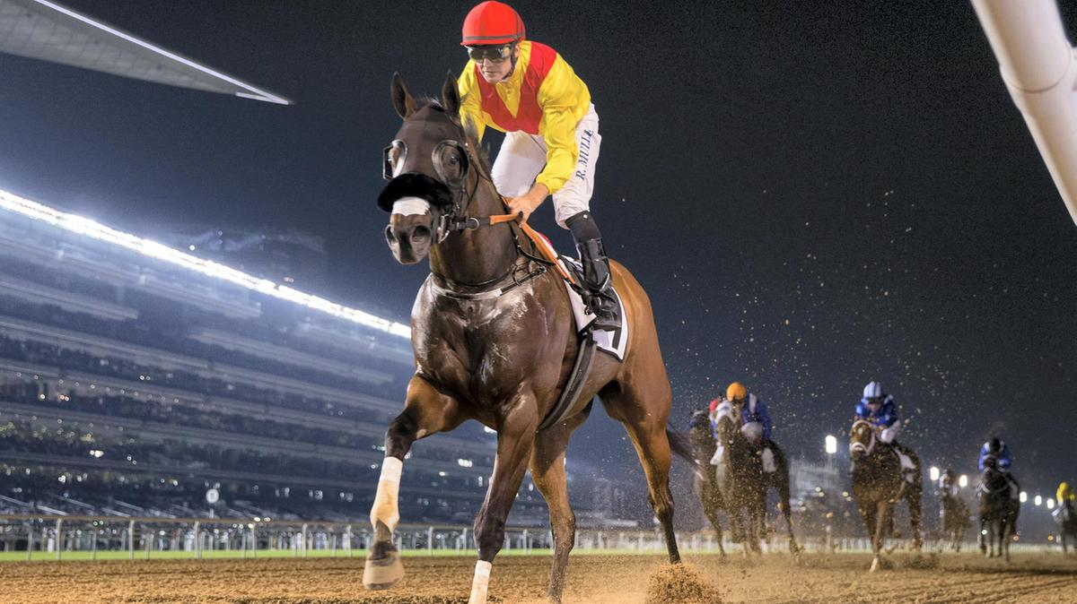 Dubai World Cup on Mar 28th at Meydan Racecourse