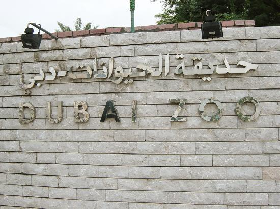 Dubai Zoo, UAE | Places to Visit in Dubai