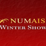 Numaish Winter Show 2015 Dubai