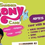 Summer Pony Camp at Al Habtoor Riding School Dubai