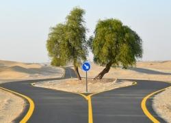 Cycle Track in Dubai – Al Qudra Road Cycle Path in Dubai, UAE