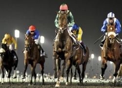 Dubai World Cup Carnival 2014 (DWCC) – Horse Race