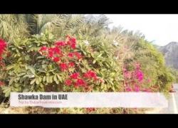 Shawka Dam in Dubai, UAE