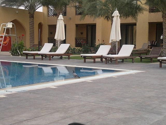 Tilal Liwa Hotel Review - Pool Area