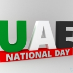 UAE National Day 2014 Dubai