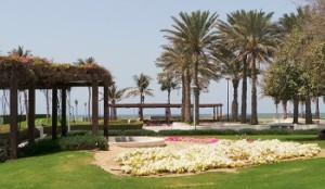 Umm Suqeim park in Dubai
