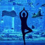 Underwater Yoga at The Lost Chambers Aquarium Details